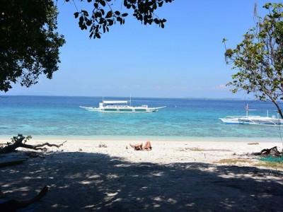 Bohol Dive Center Alona Filipinas Club Buceo 329