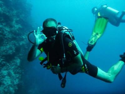 Bohol Dive Center Alona Filipinas Club Buceo 332