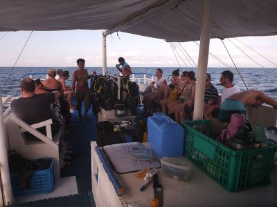 Bohol Dive Center Alona Filipinas Club Buceo 598