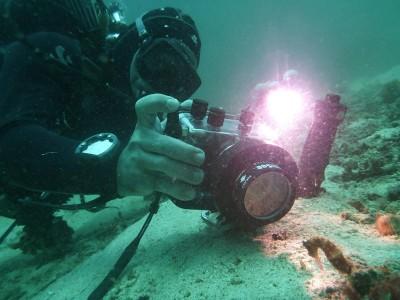 Bohol Dive Center Alona Filipinas Club Buceo 631