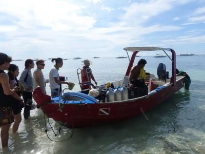 Bohol Dive Center Alona Filipinas Club Buceo 764