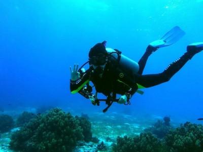 Bohol Dive Center Alona Filipinas Club Buceo 828