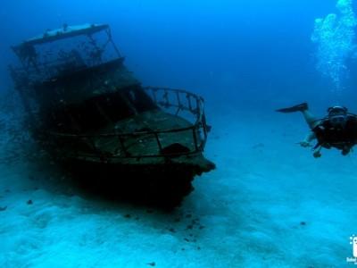 Bohol Dive Center Alona Filipinas Club Buceo 927