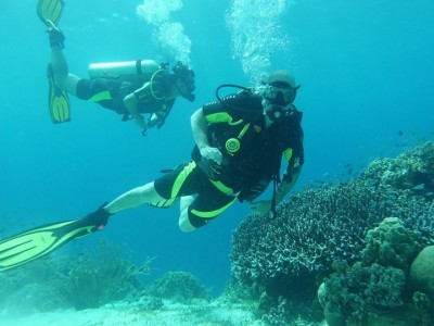 Bohol Dive Center Alona Filipinas Club Buceo 803