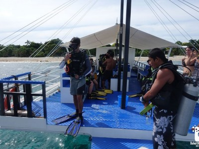 Bohol Dive Center Alona Filipinas Club Buceo 930