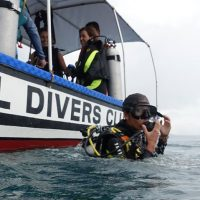 Bohol Dive Center Alona Filipinas Club Buceo 991
