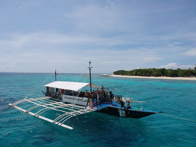 dive club buceo bohol 54