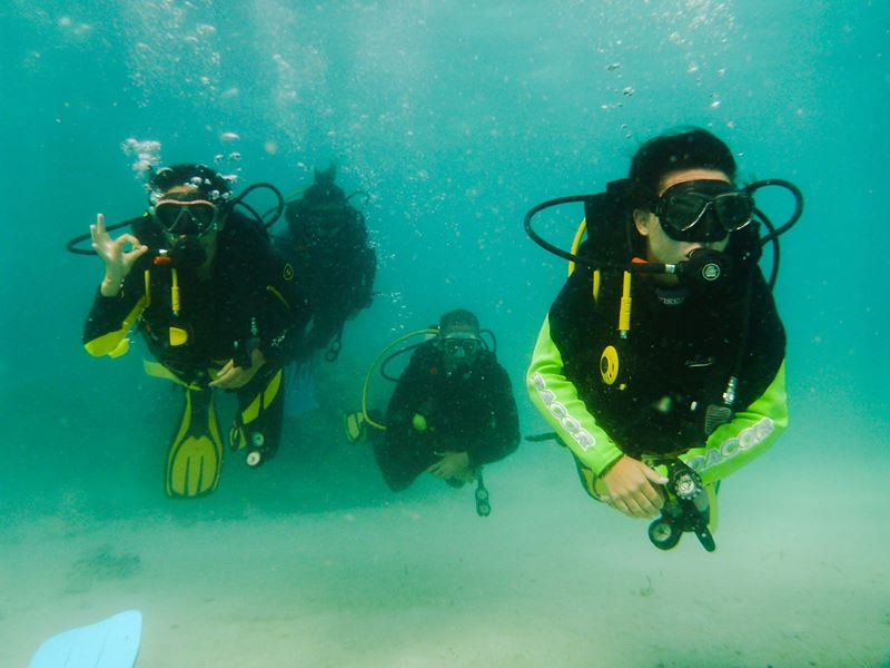 dive club buceo bohol 6