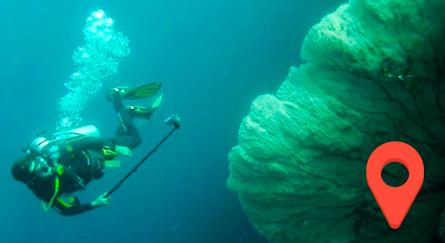 Buceo en Doljo Filipinas