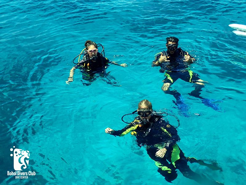dive club buceo bohol 39