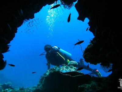 Bohol Dive Center Alona Filipinas Club Buceo 1034