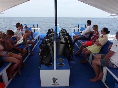 Bohol Dive Center Alona Filipinas Club Buceo 1093
