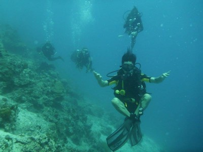 Bohol Dive Center Alona Filipinas Club Buceo 277