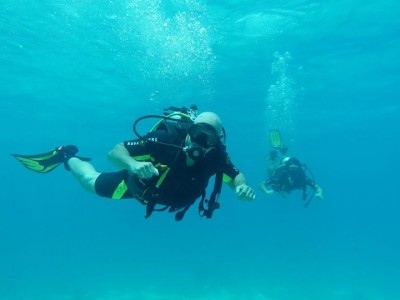 Bohol Dive Center Alona Filipinas Club Buceo 799