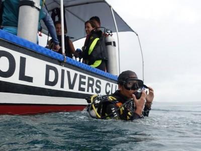Bohol Dive Center Alona Filipinas Club Buceo 991